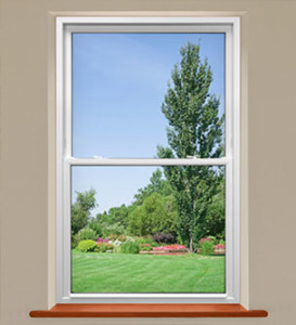 Knoxville Single Hung Windows 12