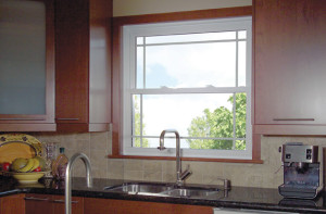 Knoxville Single Hung Windows 4