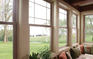 Knoxville Single Hung Windows 6
