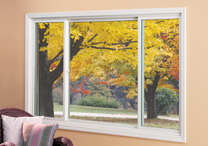 Knoxville Slider Window 12