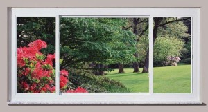 Knoxville Slider Window 4