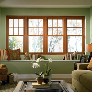 Knoxville Double Hung Windows 11