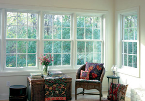 Knoxville Double Hung Windows 14